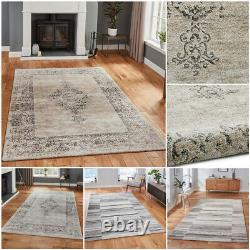Luxurious Traditional Antique Look Extra Large Soft Quality Grey Beige Think Rug